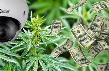Cannabis Security - Loss Prevention - Cannabis Business Today