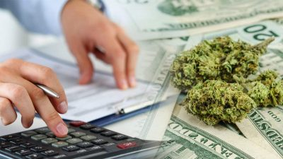How To Start A Cannabis or Hemp Business In DC, Maryland, or Virginia - Catoctin College - Cannabis Business Today